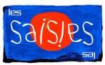 image Carte main libre à recharger sur le site internet de la station - LES SAISIES - ESPACE DIAMANT